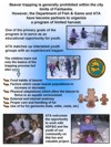 Youth Beaver Trapping School poster - click here